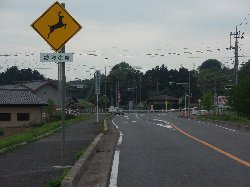 20080426shisou12