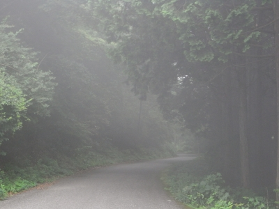 2008072106