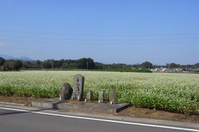 2008101301