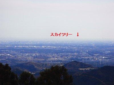 2010010310