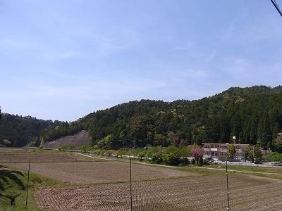 2010050319