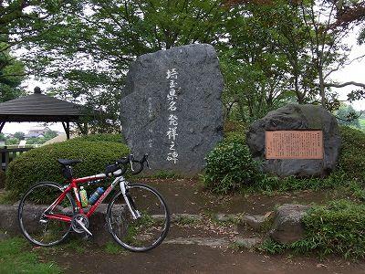2010081413