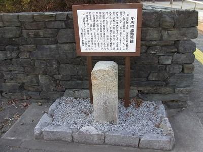 2011020416